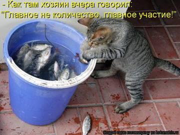 http://s9.uploads.ru/t/vkq96.jpg
