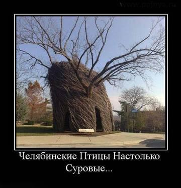 http://s9.uploads.ru/t/wOhT5.jpg