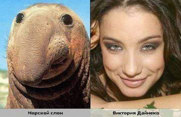 http://s9.uploads.ru/t/wVie9.jpg
