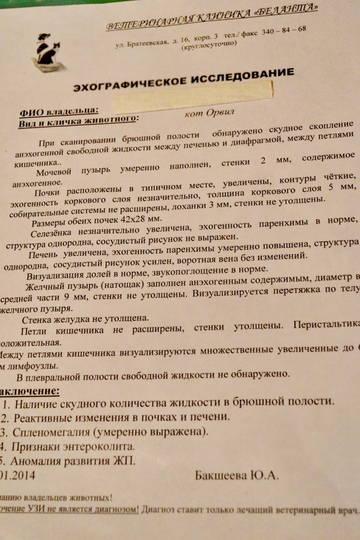 http://s9.uploads.ru/t/xIrXa.jpg