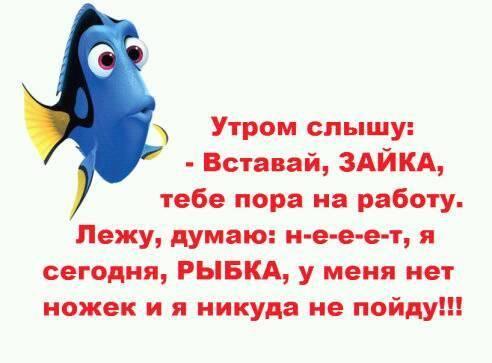 http://s9.uploads.ru/t/xiAGR.jpg