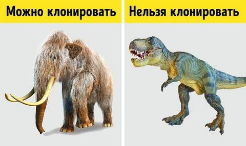 http://s9.uploads.ru/t/xpSc7.jpg