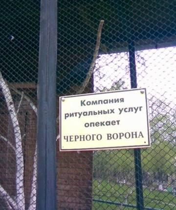 http://s9.uploads.ru/t/xzBdK.jpg