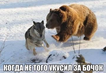 http://s9.uploads.ru/t/y2rw0.jpg