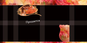 http://s9.uploads.ru/t/yGJvB.jpg