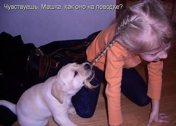 http://s9.uploads.ru/t/yPstv.jpg