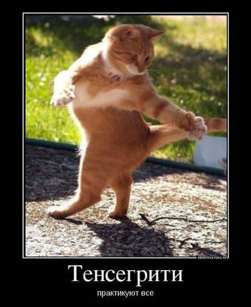 http://s9.uploads.ru/t/ynsAx.jpg