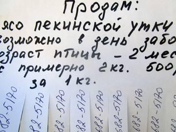 http://s9.uploads.ru/t/zIGE5.jpg