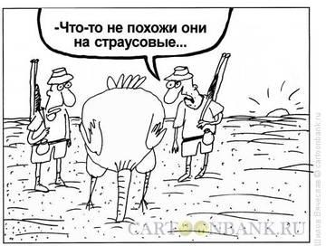 http://s9.uploads.ru/t/zi6P1.jpg