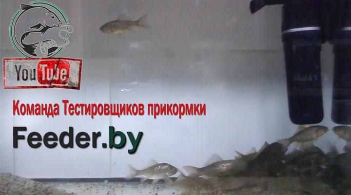 http://s9.uploads.ru/uXDi6.jpg