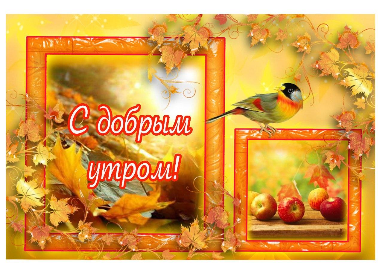 http://s9.uploads.ru/wSUHd.jpg
