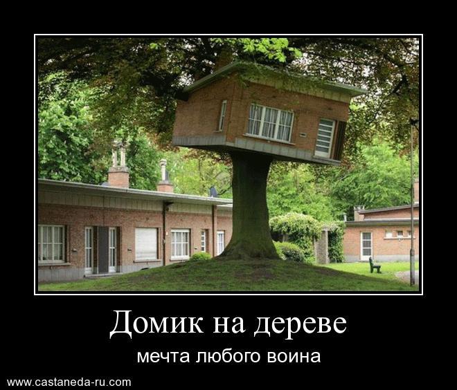 http://s9.uploads.ru/xIoFl.jpg
