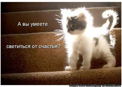 http://s9.uploads.ru/xrOIf.jpg