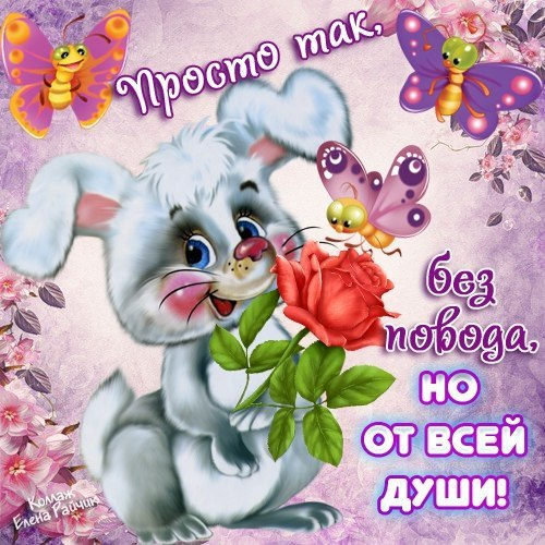 http://s9.uploads.ru/zkj3i.jpg