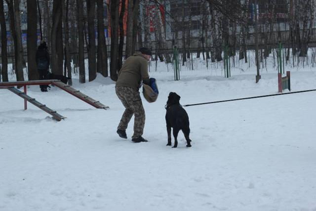 http://s9.uploads.ru/01c9E.jpg
