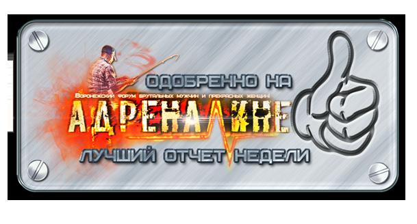 http://s9.uploads.ru/0Dotk.png