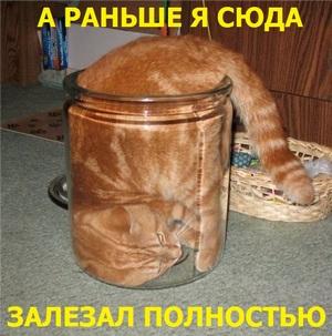 http://s9.uploads.ru/31SIA.jpg