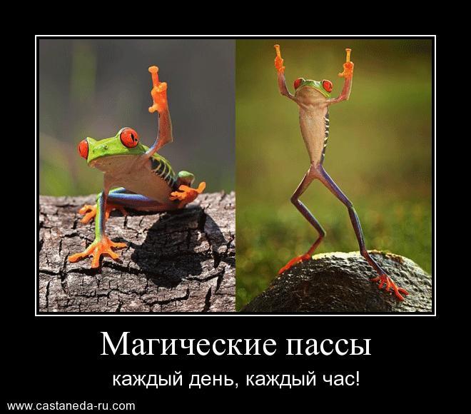 http://s9.uploads.ru/49bfK.jpg