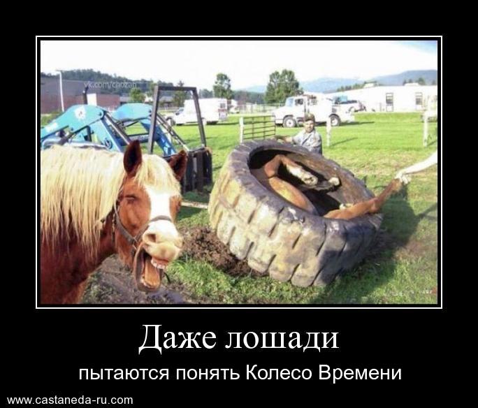 http://s9.uploads.ru/AZWox.jpg