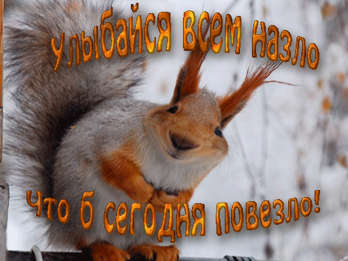 http://s9.uploads.ru/FjwYB.png