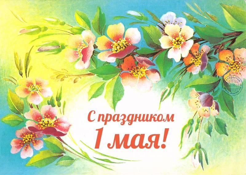 http://s9.uploads.ru/GH27v.jpg