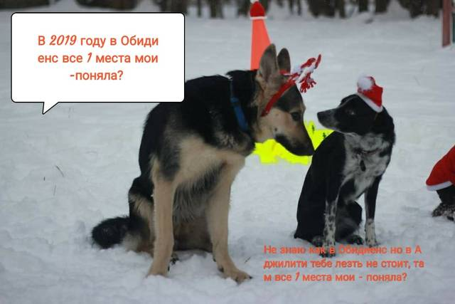 http://s9.uploads.ru/Jrysa.jpg