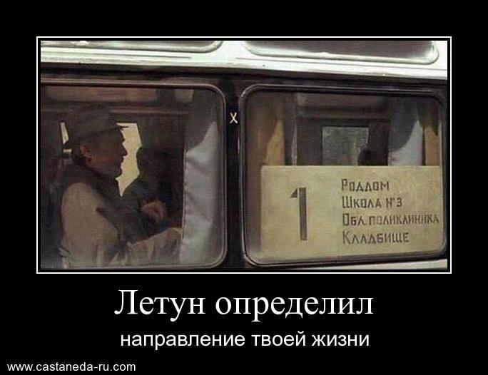 http://s9.uploads.ru/QYa0O.jpg