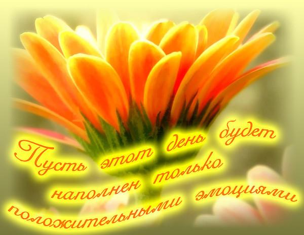 http://s9.uploads.ru/Uht19.jpg