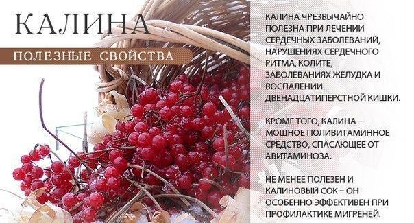 http://s9.uploads.ru/Vnm3i.jpg