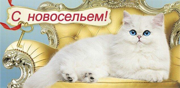 http://s9.uploads.ru/YEdFP.jpg