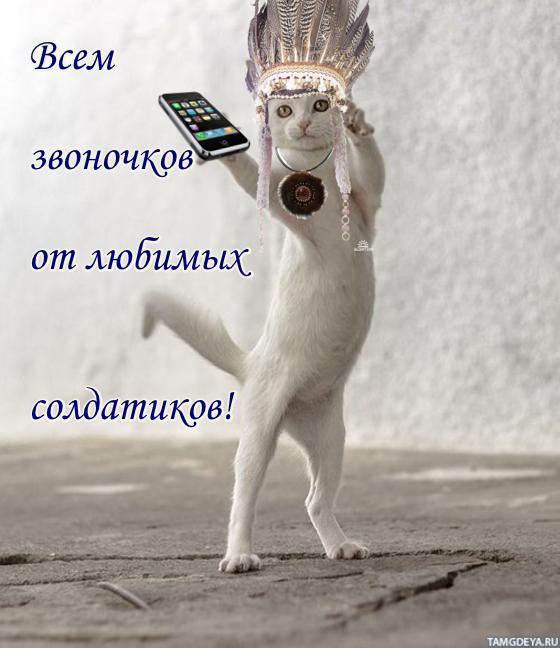 http://s9.uploads.ru/btz4V.png