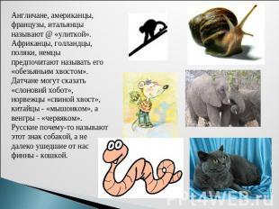 http://s9.uploads.ru/cD9Jd.jpg