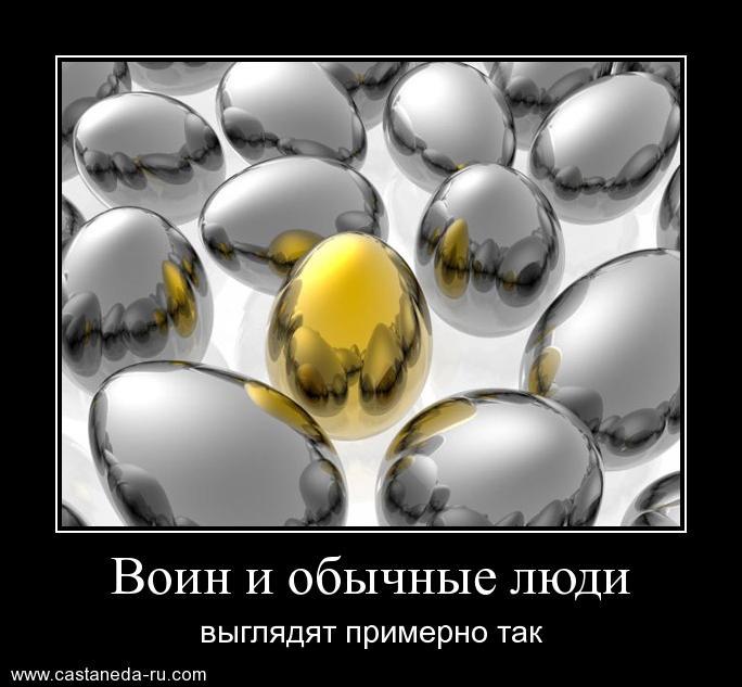 http://s9.uploads.ru/jSzVQ.jpg