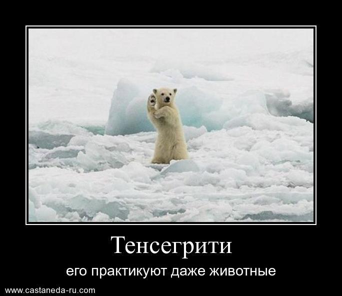 http://s9.uploads.ru/jg0uN.jpg