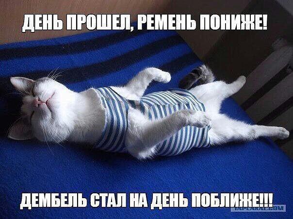 http://s9.uploads.ru/pREBW.jpg
