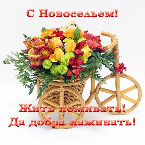 http://s9.uploads.ru/pSGYN.jpg