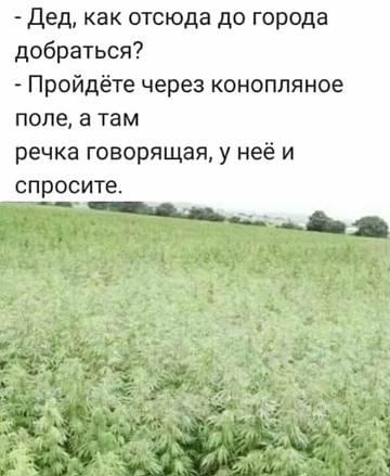 http://s9.uploads.ru/t/074PA.jpg