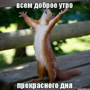 http://s9.uploads.ru/t/3A4SN.jpg