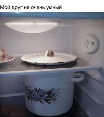 http://s9.uploads.ru/t/7mW1t.jpg