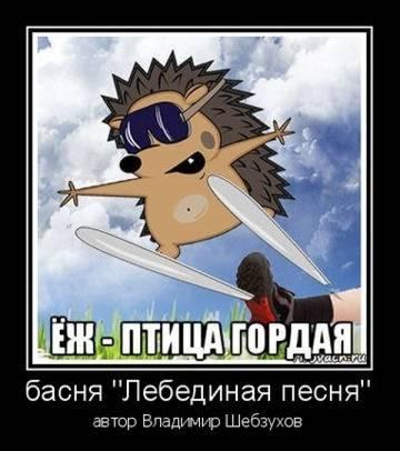 http://s9.uploads.ru/t/IFAK7.jpg
