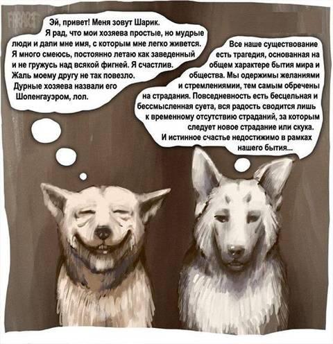 http://s9.uploads.ru/t/IlEQ7.jpg