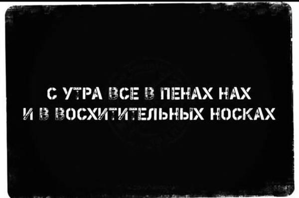 http://s9.uploads.ru/t/KYifH.jpg