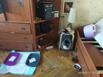 http://s9.uploads.ru/t/ONqea.jpg