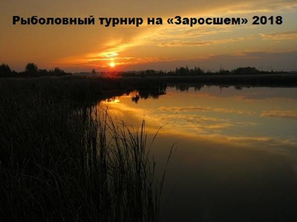 http://s9.uploads.ru/t/Rde7F.jpg