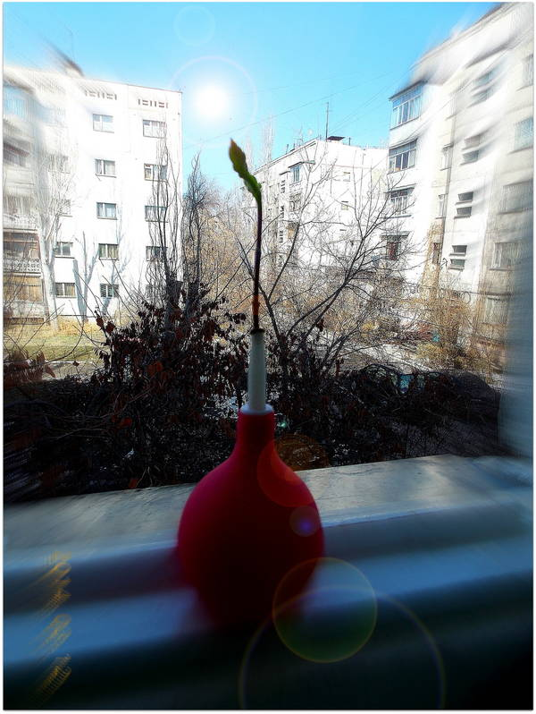http://s9.uploads.ru/t/Zn1aC.jpg