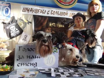 http://s9.uploads.ru/t/bSINE.jpg