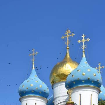 http://s9.uploads.ru/t/bu6i0.jpg
