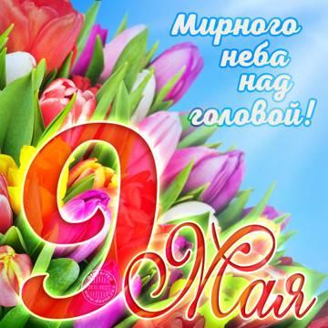 http://s9.uploads.ru/t/d2ors.jpg