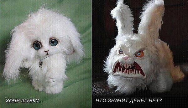 http://s9.uploads.ru/t/ivMOa.jpg