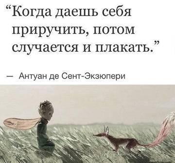 http://s9.uploads.ru/t/myB9D.jpg